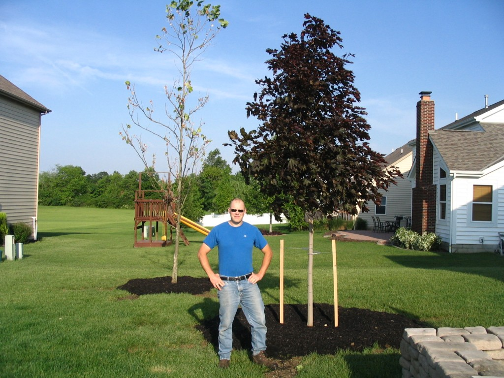 Landscape Contractor, Landscaping Company